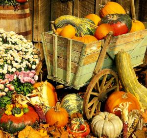 fall_finery