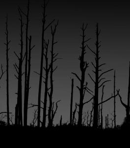 empty_trees